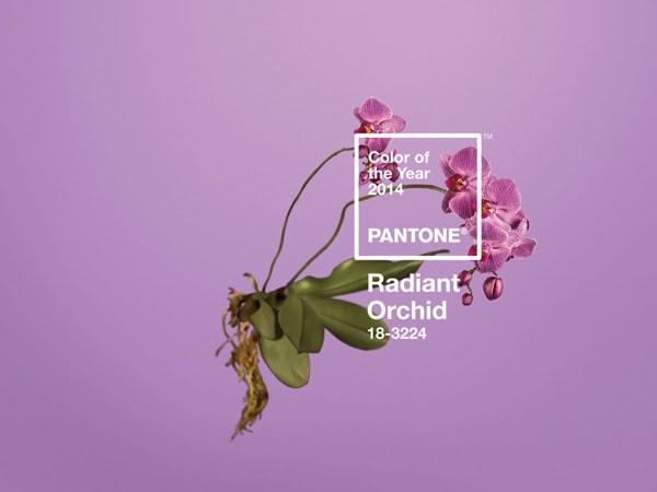 Pantone Radiant Orchid: Πώς θα εντάξεις το χρώμα της σεζόν στην καθημερινότητα σου;