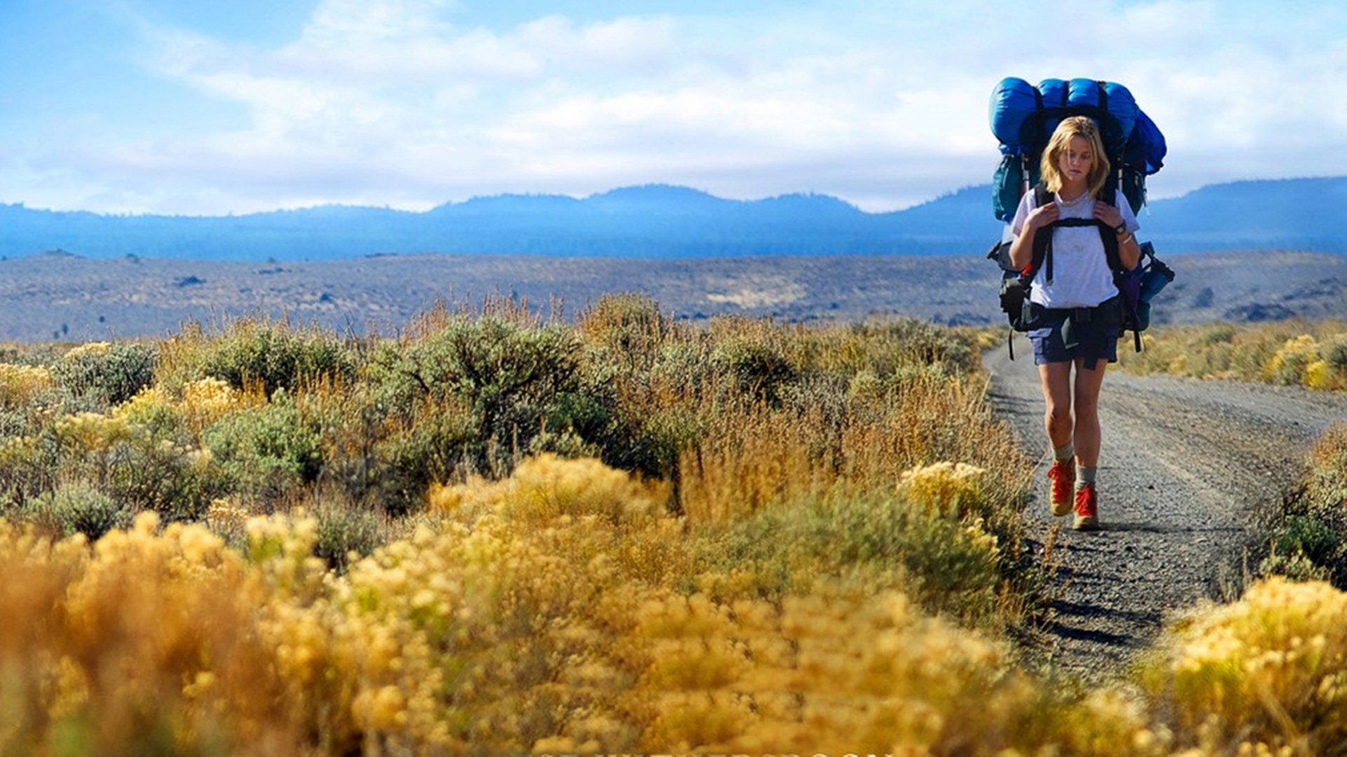 """Wild"": Πώς είναι να τα παρατάς όλα και να παίρνεις τα βουνά"
