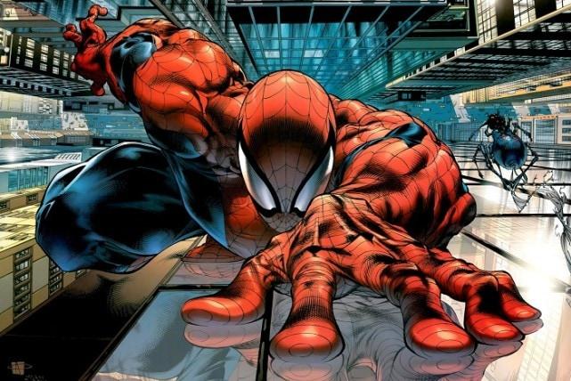 2990836-spider+20