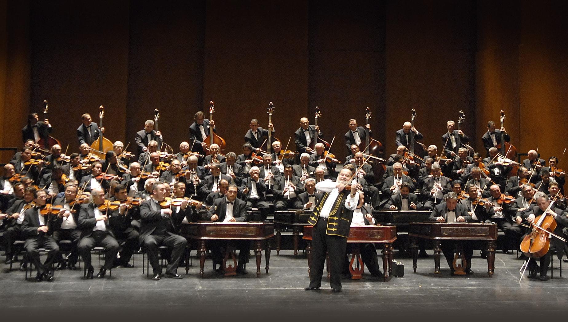 public - grand budapest orchestra
