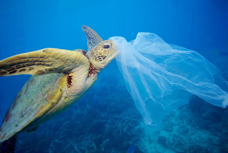 Παγκόσμια Ημέρα Περιβάλλοντος: Τι αφήνουμε πίσω μας;