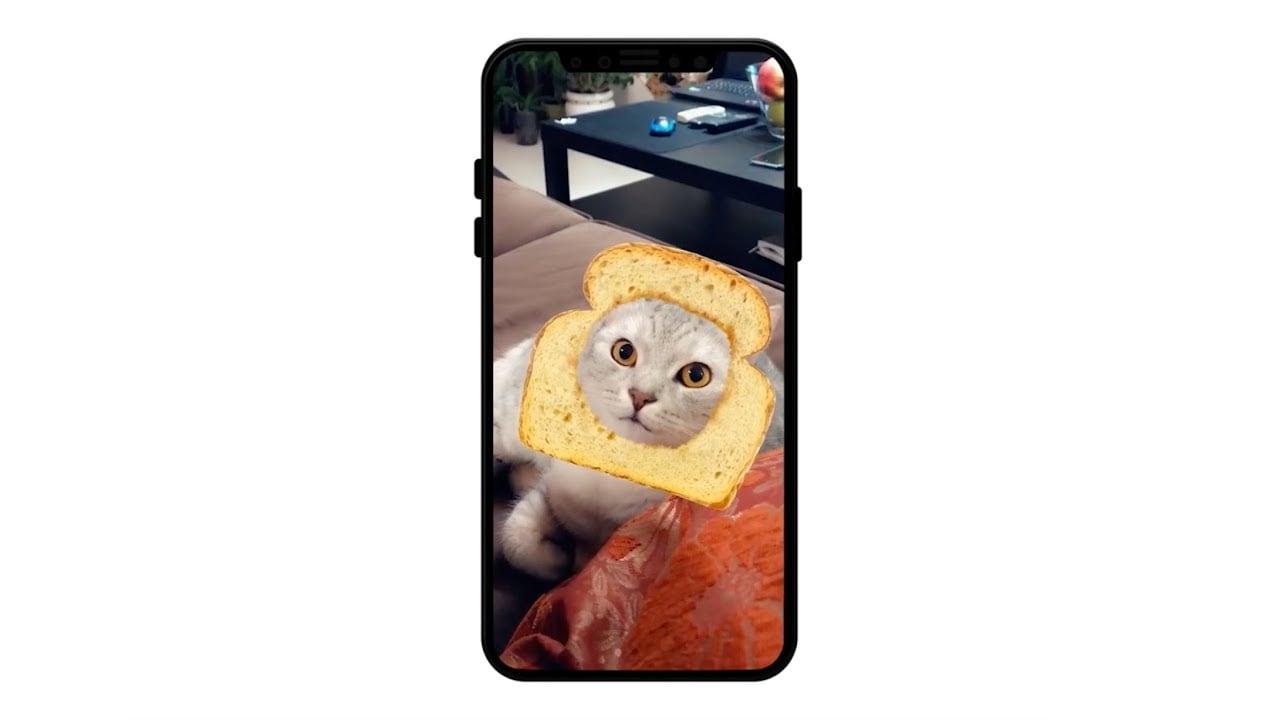 Η δική σου γάτα έχει Snapchat;